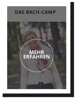 Antje Bach, Seminar Das Bach-Camp, Ihr Ausweg aus dem Stress