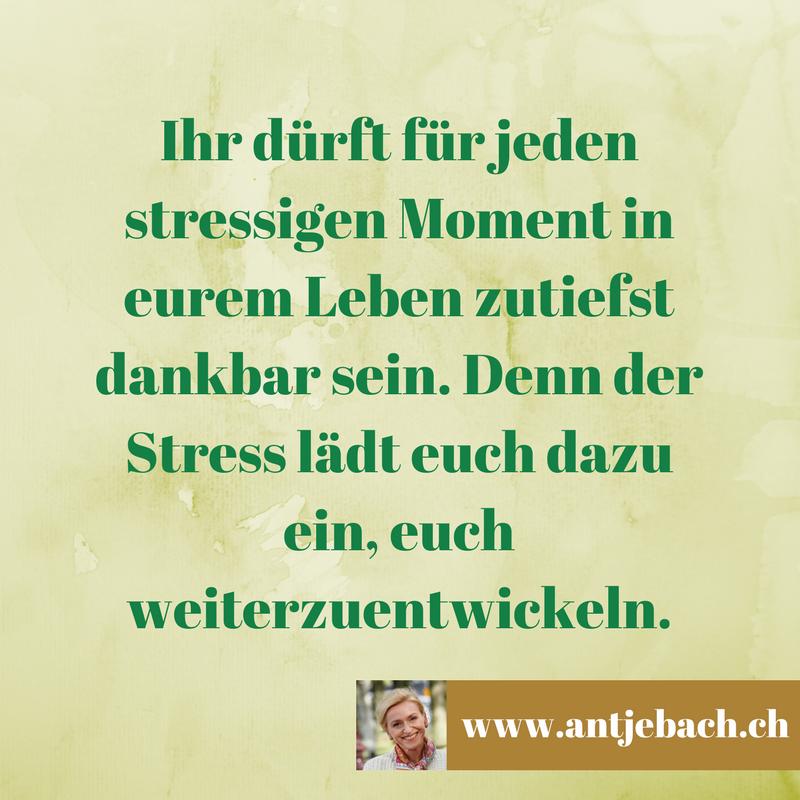 Antje Bach, inspiriert, dankbar, Stress, Zitat, Zitatekarte