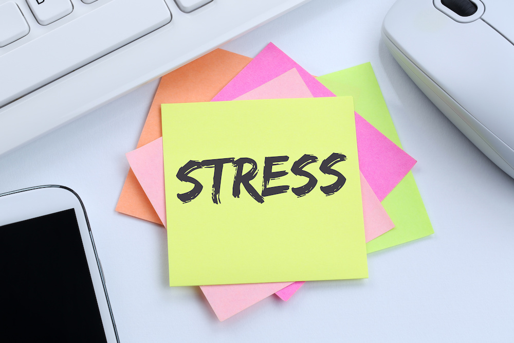 Stress, Freizeit, Edition F., Antje Bach