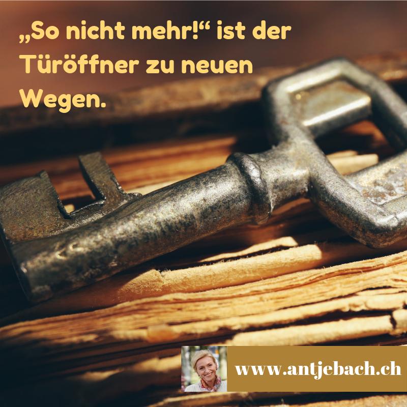 Inspiriert, Antje Bach, Zitat
