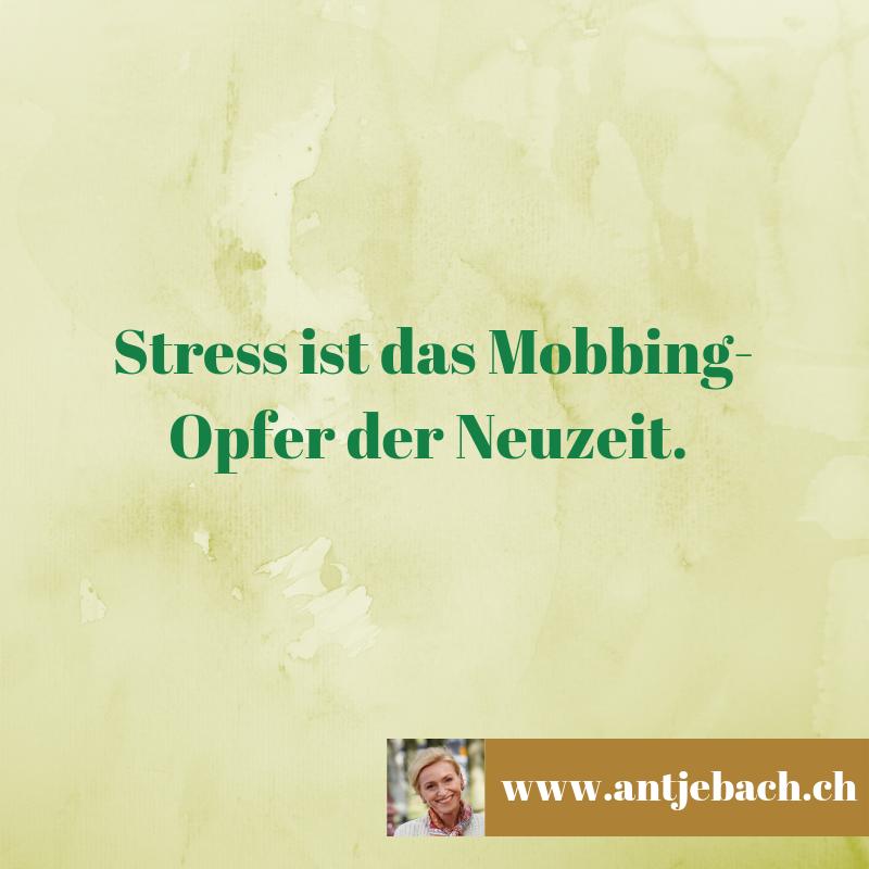 Inspiriert, Antje Bach, Stress